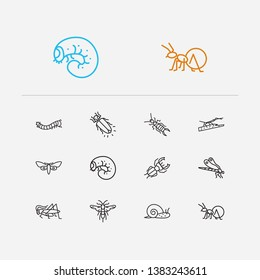 Insect icons set. Dragonfly and insect icons with stag beetle, snail and honey ant. Set of life for web app logo UI design.