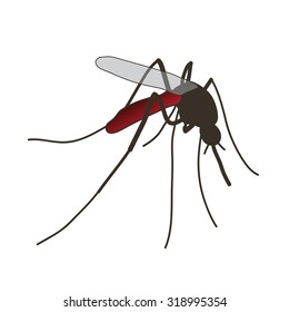 Insect. a realistic mosquito. Mosquito silhouette. Mosquito isolated  on white background.  mosquito.  mosquito. Vector illustration