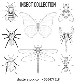 Insect set bee, fly, butterfly, dragonfly, beetle, ant, spider, scorpion insect geometric lines silhouette isolated on white background vintage vector design element illustration