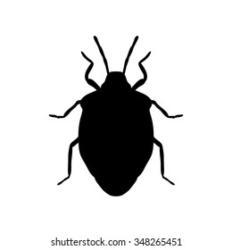 Insect silhouette. shield bug. Palomena prasina. Sketch of shield bug.silhouette  shield bug isolated on white background. shield bug Design for coloring book.shield bug. Vector illustration