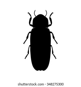 insect silhouette.Firefly beetle Lampyridae.photinus pyralis.  Sketch of Firefly beetle. Firefly beetle isolated on white background. Firefly beetle  hand-drawn Firefly beetle. Vector illustration