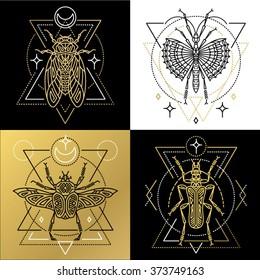 Insectos Vector Images, Stock Photos & Vectors | Shutterstock