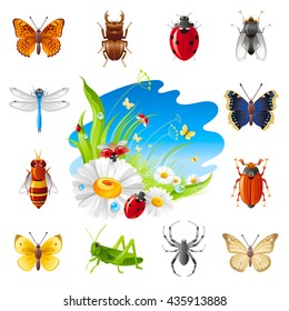 Insect and summer nature icon set with illustration for design. Chamomile flowers, ladybugs, grass and blue sunny sky.Animal icons: butterfly, beetle, ladybug, dragonfly, bee, grasshopper, spider, fly