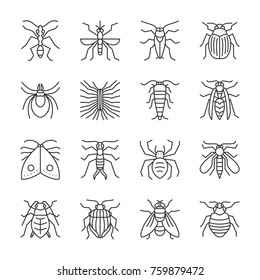 Insect thin line icon set. Beetle vector isolated linear symbol pack. Bugs outline sign without fill. Editable stroke. Simple pictogram entomology collection. Ant, mosquito, web, print, logo, tattoo