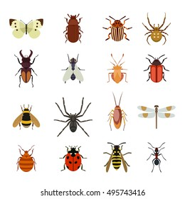 insect images stock photos vectors shutterstock