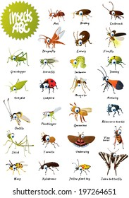Insects ABC
