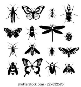 Insects black and white decorative icons set with grasshopper bug ladybug isolated vector illustration.