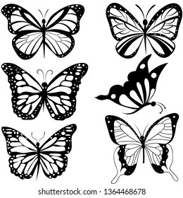 insects butterfly outline, tattoo, coloring, vector set