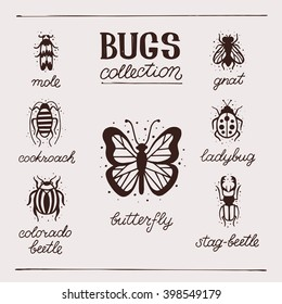 Insects collection kit. Bugs and beetles vector set. Mole, gnat, butterfly, ladybug, stag-beetle, colorado beetle, cockroach.