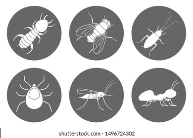 Insects icon set. Cockroach, termite, mosquito, fly, ant and tick. Vector.