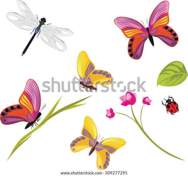 insects-isolated-on-white-background-600