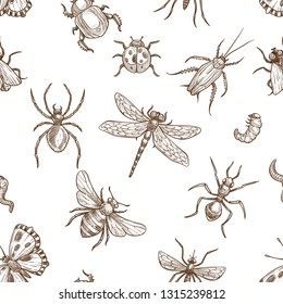 Insects that fly and creep monochrome sepia sketches seamless pattern. Big dragonfly, beautiful butterfly, tiny ant, scary spider, short worm, cute bee and round ladybug isolated vector illustrations