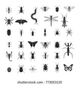 Insects vector icon set. Realistic vector insects set.