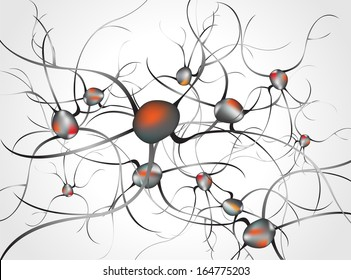 Inside the brain. Concept of neurons and nervous system  vector