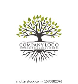 inspiring the concept of tree logos and vibrant roots, vector eps 10