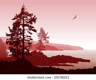 Inspiring illustration depicting the rugged west coast of Vancouver Island