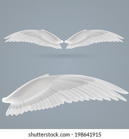 Inspiring wings drawn separately on  gray background.