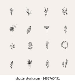 Instagram Cover Highlight Icon. Black Flower logo element. Hand drawn plants. Natural Instagram Story. Simple doodle. Instagram Story Highlight Icon.