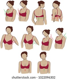 instructions for choosing a bra