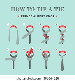 Instructions on how to tie a tie on the turquoise background of the eight steps. Prince Albert knot . Vector Illustration.