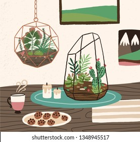 Interior of cozy room with succulents, cactuses and other desert plants growing in glass vivariums or florariums. Natural home decorations in trendy Scandic style. Colorful vector illustration.