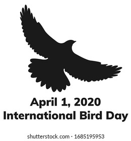 International bird day and the silhouette of a hawk in the sky. Vector illustration isolated on a white background