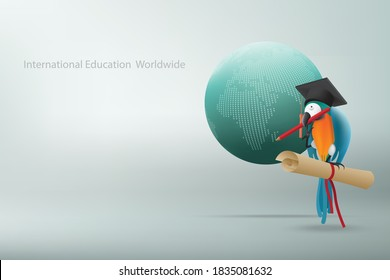 International education worldwide concept with Playful macaw with bachelor hat with red pencil and diploma floating alongside an abstract globe on gray gradient background. Illustration 3D rendering.