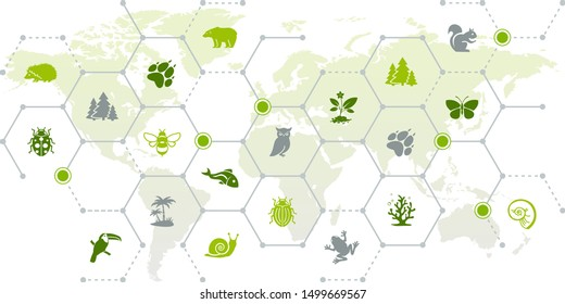 international wildlife / biodiversity icon concept – endangered animals icons with world map, vector illustration