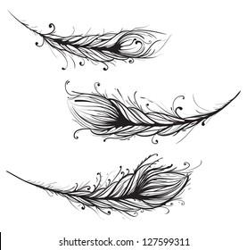 Intricate Decorative Feathers Illustration. Ornate Feathers Illustration EPS8.