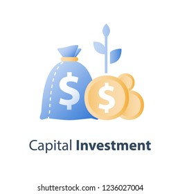 Investment fund, money bag and coins with plant stem, pension savings account, superannuation payment, capital allocation, wealth management, long term interest, financial solution, vector icon