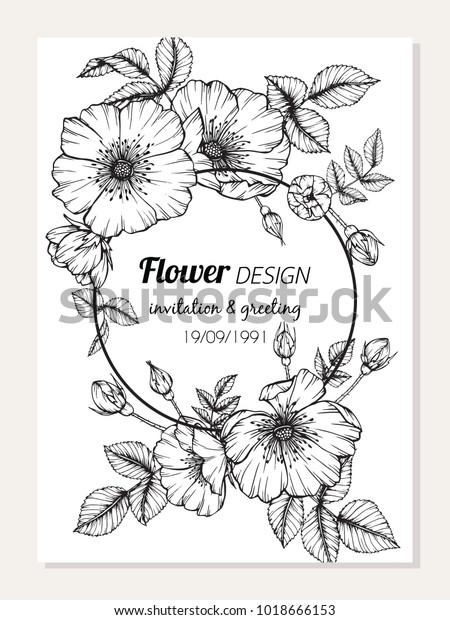 Invitation Greeting Card Design Roses Flower庫存向量圖 免