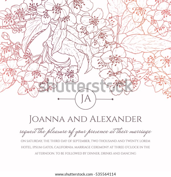 Invite Card Hand Drawn Jasmine Flowers Stock Vector Royalty
