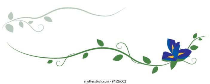 Iris decorative ornament