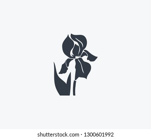 Iris icon isolated on clean background. Iris icon concept drawing icon in modern style. Vector illustration for your web mobile logo app UI design.