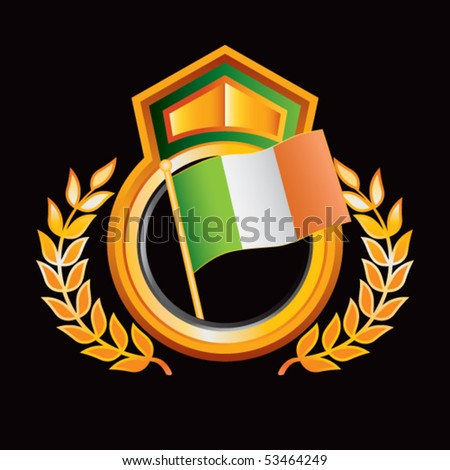 Irish Flag Orange Green Royal Display Stock Vector (Royalty Free