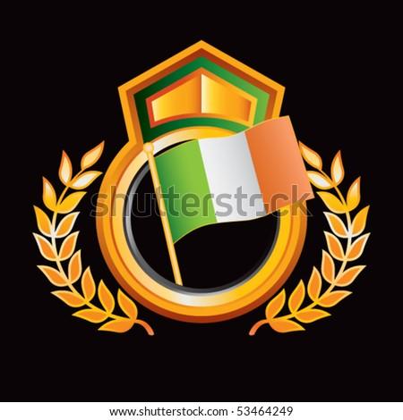 Irish Flag Orange Green Royal Display Stock Vector (Royalty Free