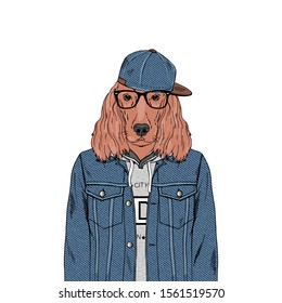 Irish Setter breed Hipster portrait. Fashion anthropomorphic dog illustration. Animal dressed up in jeans jacket, hoodie, cap and glasses. Modern urban city look. Hand drawn vector.