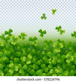 Irish shamrock leaves with pure water drops isolated on transparent background. Green irish symbol Good Luck. Vector clover pattern for Saint Patrick's Day holiday greeting card design