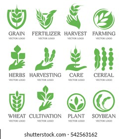 Isolated abstract green color wheat ear logo collection. Nature element logotype set. Leaf in human hand icon. Agricultural organic products signs. Harvesting vector illustration
