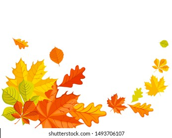Isolated autumn leaves, vector illustration