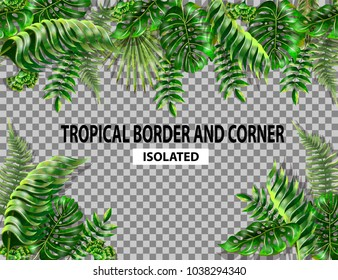 Isolated border and corner with tropical leaves. Monstera, fern and palm seamless border.