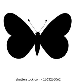 isolated, butterfly black silhouette, insect