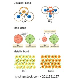 Isolated of chemical bonding on white background.vector illustration.covalent bond,Ionic bond,Metallic bond model. Science,education.