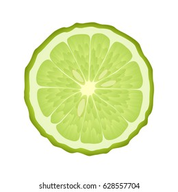 Isolated circle of juicy green color bergamot on white background. Realistic colored round slice.