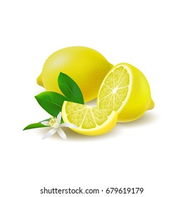 Isolated colored group of lemons, half, slice and whole juicy fruit with green leaves, white flower and shadow on white background. Realistic citrus.