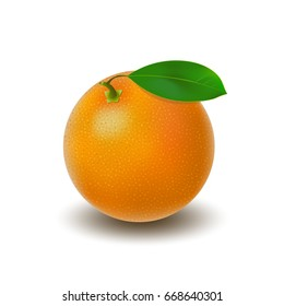 Isolated colored whole juicy orange with green leaf and shadow on white background. Realistic citrus fruit.