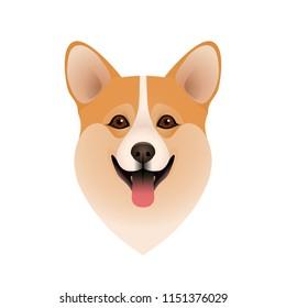 Isolated colorful head of happy welsh corgi pembroke or cardigan on white background. Flat cartoon breed dog portrait.