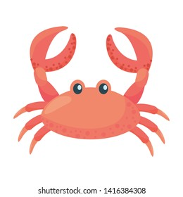 Isolated crab cartoon design vector illustration