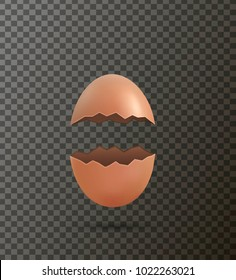 isolated cracked egg, vector