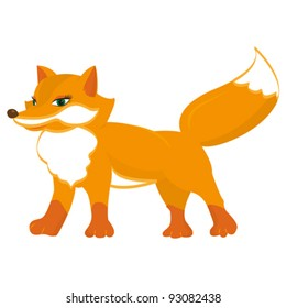 Isolated cute red fox on a white background